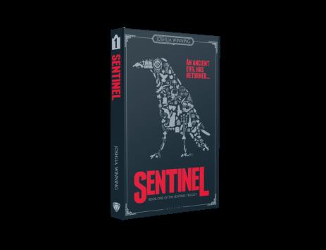 Sentinel 3D